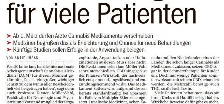 Cannabis als Medizin – Hoffnung für Schmerzpatienten